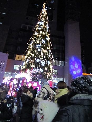 ちょっとクリスマス気分♪_b0177436_107985.jpg