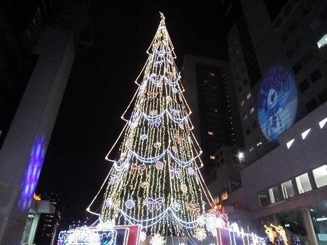 ちょっとクリスマス気分♪_b0177436_9252454.jpg