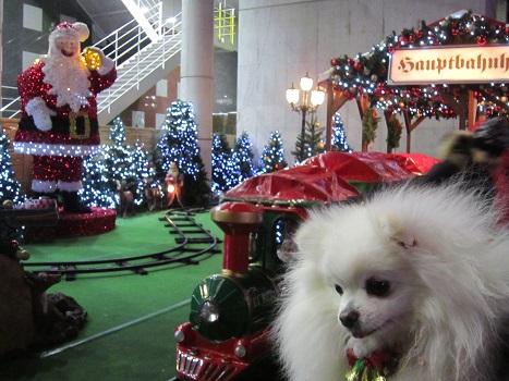 ちょっとクリスマス気分♪_b0177436_9404181.jpg
