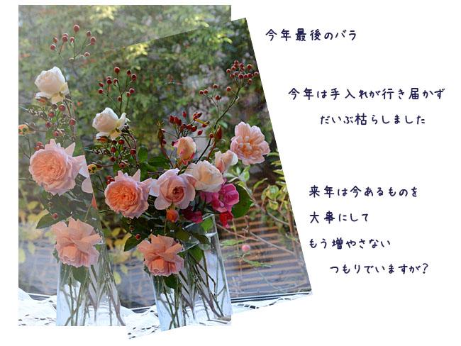 e0020954_1720881.jpg