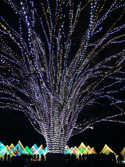 もうすぐクリスマス☆立川店より_a0254084_20031765.jpg