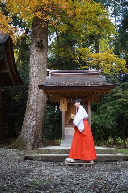 近江鉄道で日向神社を参拝_d0181492_20185429.jpg