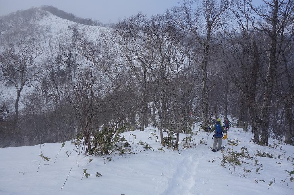 イチャンコッペ山と幌平山、12月21日-下山編-_f0138096_2251080.jpg