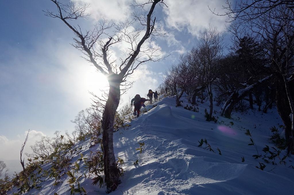 イチャンコッペ山と幌平山、12月21日-下山編-_f0138096_22511615.jpg