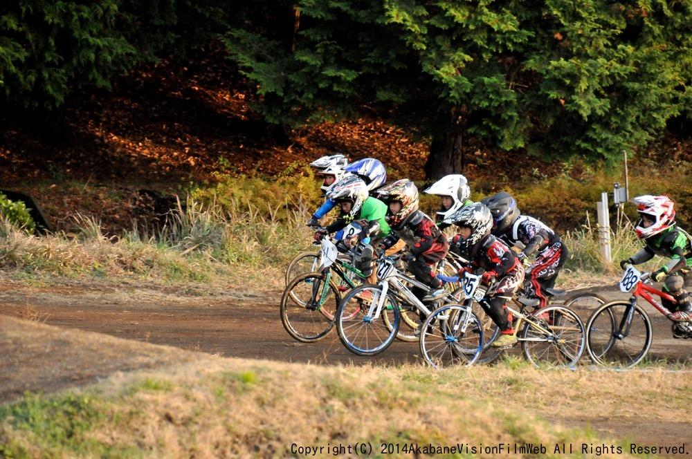 2014 JOSF FINAL RACE VOL4:ビギナー、パウダー、ミルキー6決勝 動画あり_b0065730_2014482.jpg