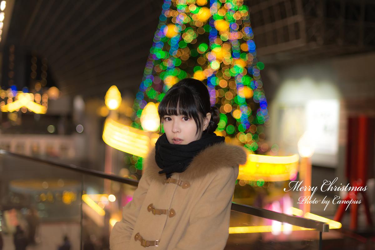 2014 Merry Christmas その2_e0196140_23135873.jpg