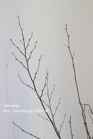 玄関に置いた物と壁に飾った物_e0214646_2222250.jpg