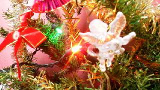 クリスマスツリー_d0004447_1525523.jpg