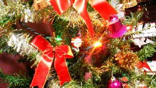 クリスマスツリー_d0004447_15255230.jpg