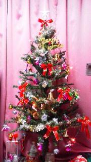 クリスマスツリー_d0004447_15255250.jpg