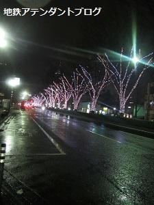 「きれい!」な夜の街を散策♪_a0243562_11204141.jpg
