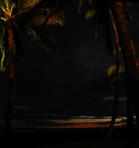 オーキッズで夜ごはん_c0100865_08243001.jpg