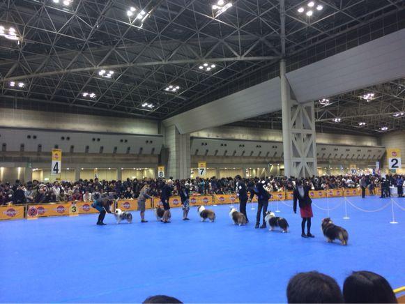 FCI東京インター_f0126965_2219388.jpg
