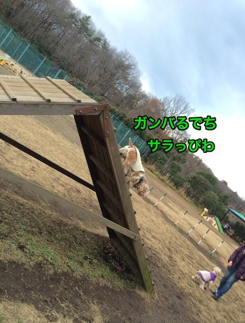 b0067012_248596.jpg
