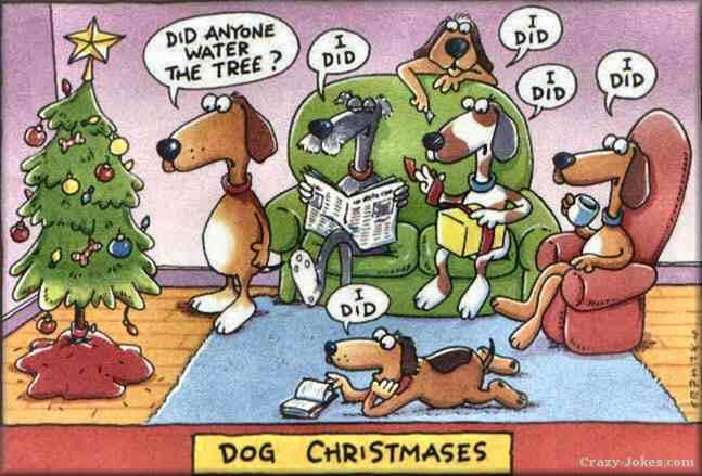 Merry Christmas_e0192217_10191298.jpg
