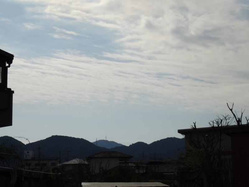 皇帝ダリアさん 長い間ありがとう     by     (TATE-misaki)_c0108460_16032657.jpg