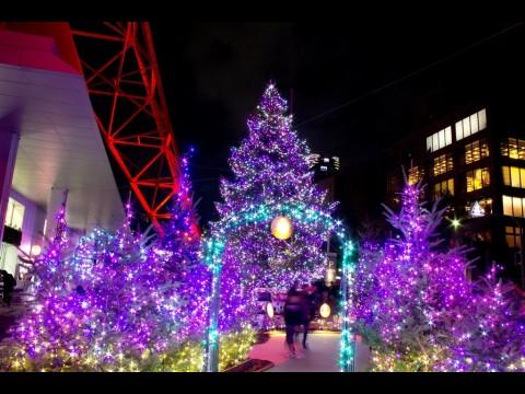 クリスマスイブ♪_a0300078_20153797.jpg