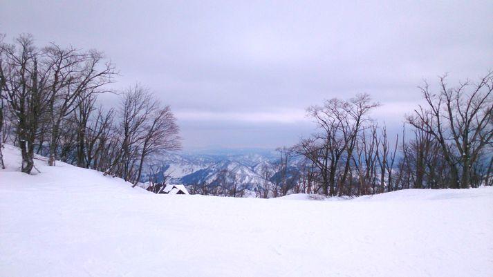 スキー病再発_b0091187_2213127.jpg