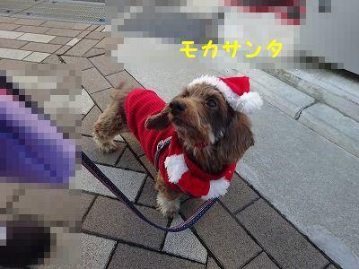サンタ三昧_e0222588_16402913.jpg