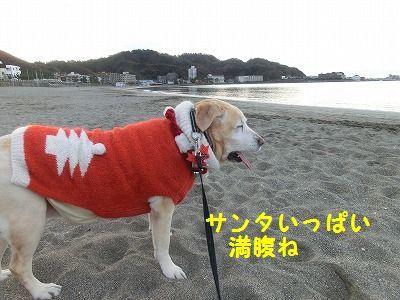サンタ三昧_e0222588_16420485.jpg