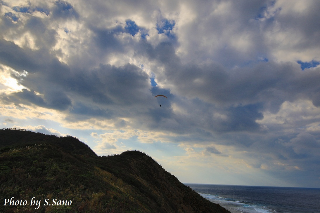 奄美群島の旅(2014)_b0348205_00230914.jpg