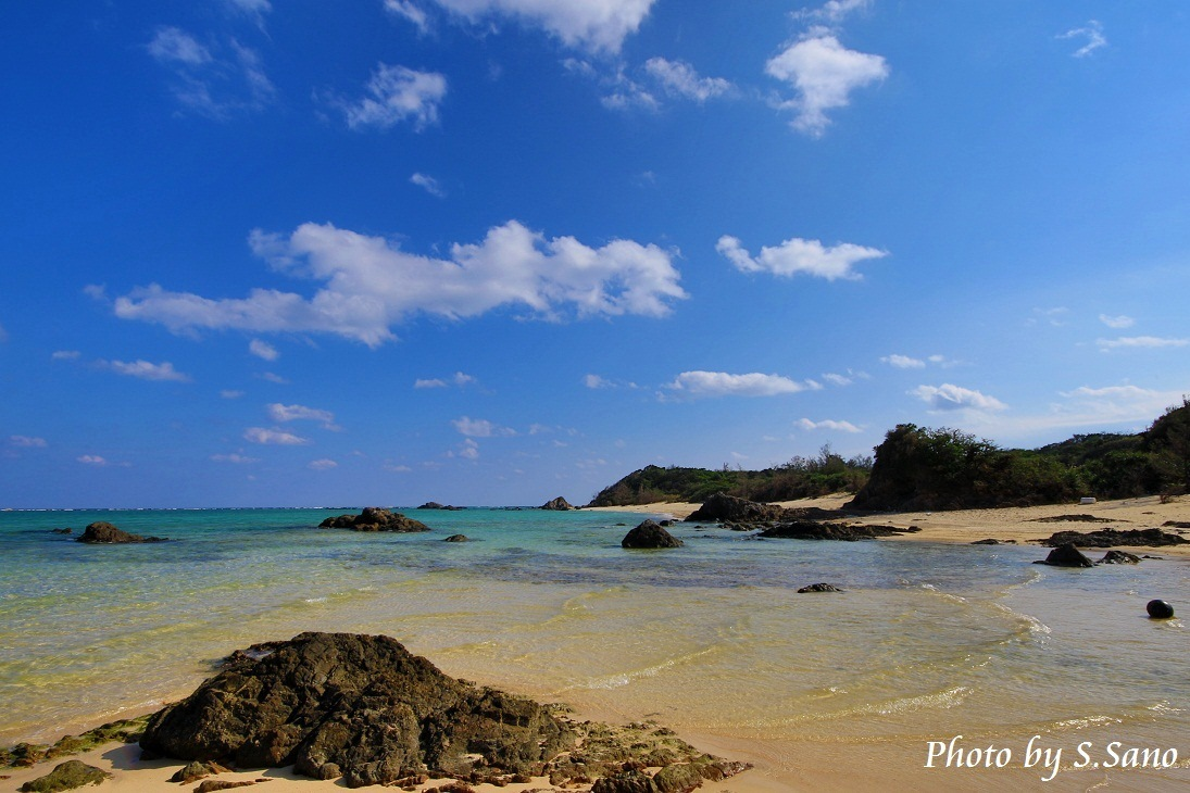 奄美群島の旅(2014)_b0348205_01030632.jpg