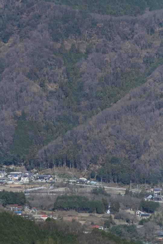 冬日を浴びて汽車が行く - 秩父鉄道・2014年冬 -  _b0190710_0155724.jpg