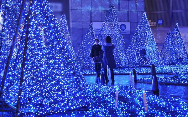 高輝度発光ダイオード発明の国、日本のクリスマスイルミネーションがすごい!_e0171614_2223338.jpg