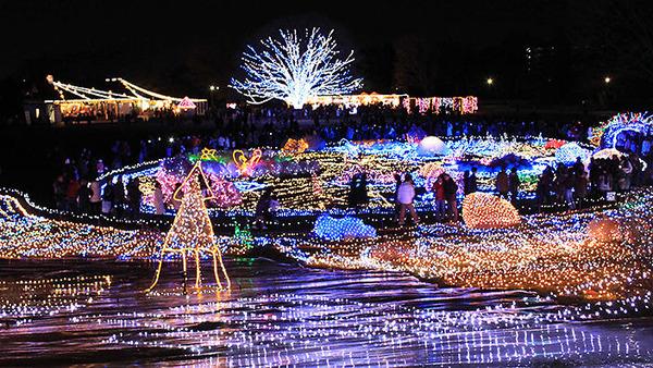 高輝度発光ダイオード発明の国、日本のクリスマスイルミネーションがすごい!_e0171614_22234199.jpg