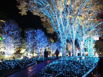 高輝度発光ダイオード発明の国、日本のクリスマスイルミネーションがすごい!_e0171614_2223839.jpg