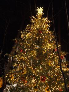 ヤム家とのクリスマスイブ_e0192217_992283.jpg