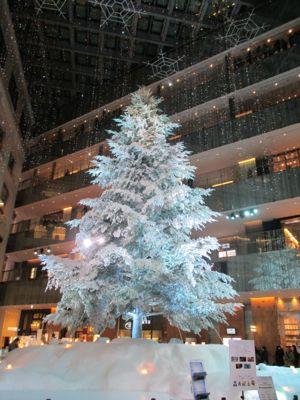 Buon Natale!!_d0136540_21342113.jpg