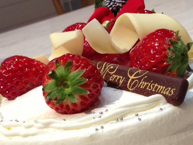 Merry Christmas!_d0161959_2144771.jpg