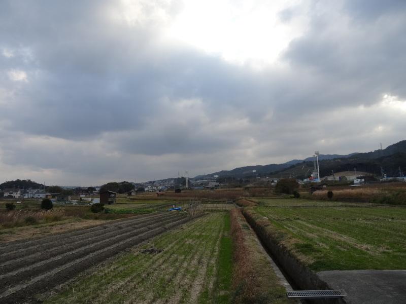 [とんど]用のワラを頂きました     by     (TATE-misaki)_c0108460_12180443.jpg