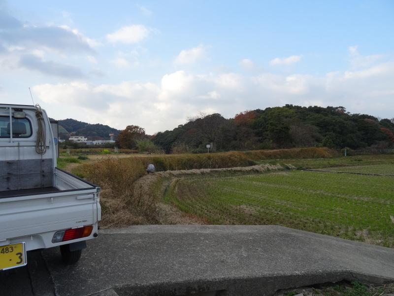 [とんど]用のワラを頂きました     by     (TATE-misaki)_c0108460_12180558.jpg