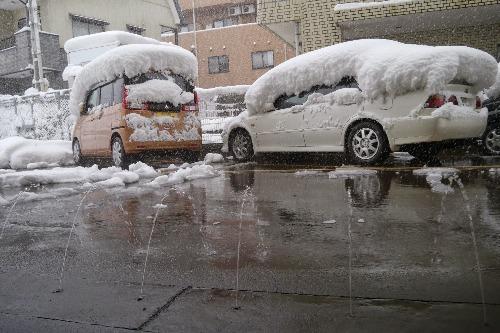 雪が降りました!_e0266363_1627667.jpg