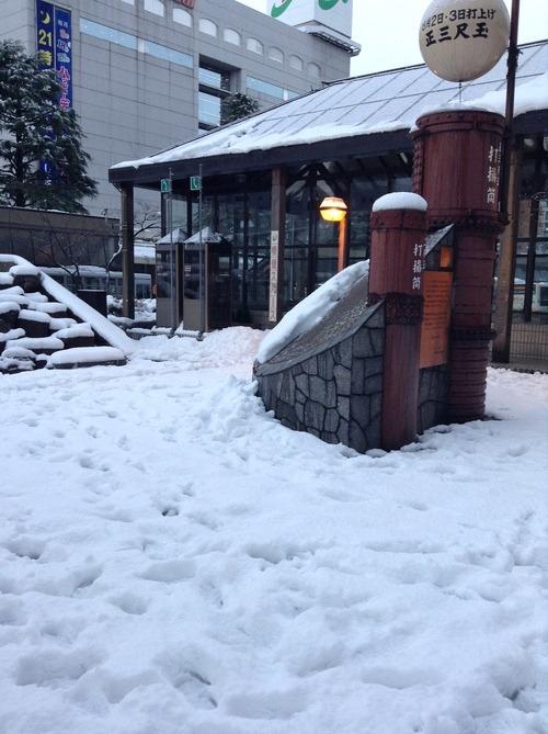 とうとう雪が降り出しました!_e0266363_16384384.jpg