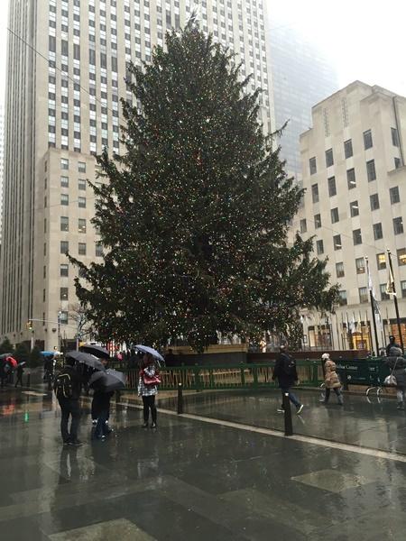 2014-12-24(NY時間) クリスマス・イヴも雨_e0021965_12165373.jpg
