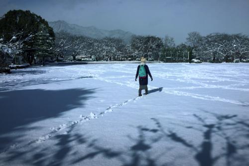 雪の散歩道_e0158970_18534696.png