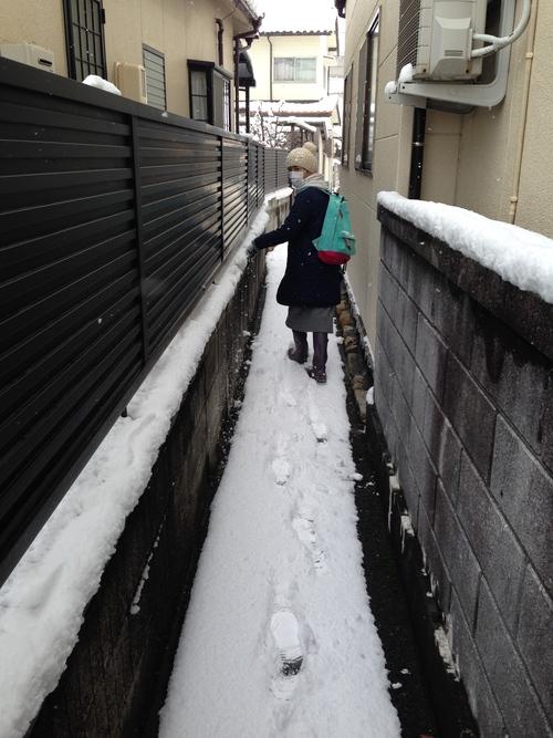 雪の散歩道_e0158970_1931480.jpg