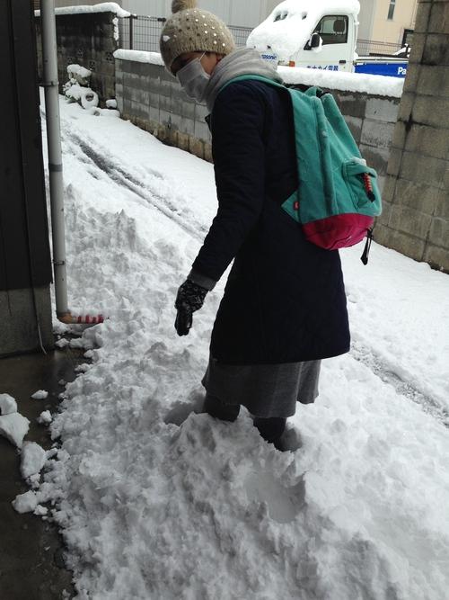 雪の散歩道_e0158970_1935617.jpg