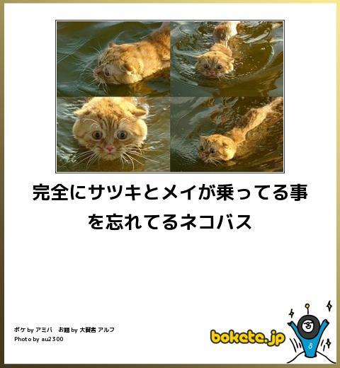 d0057589_1130069.jpg