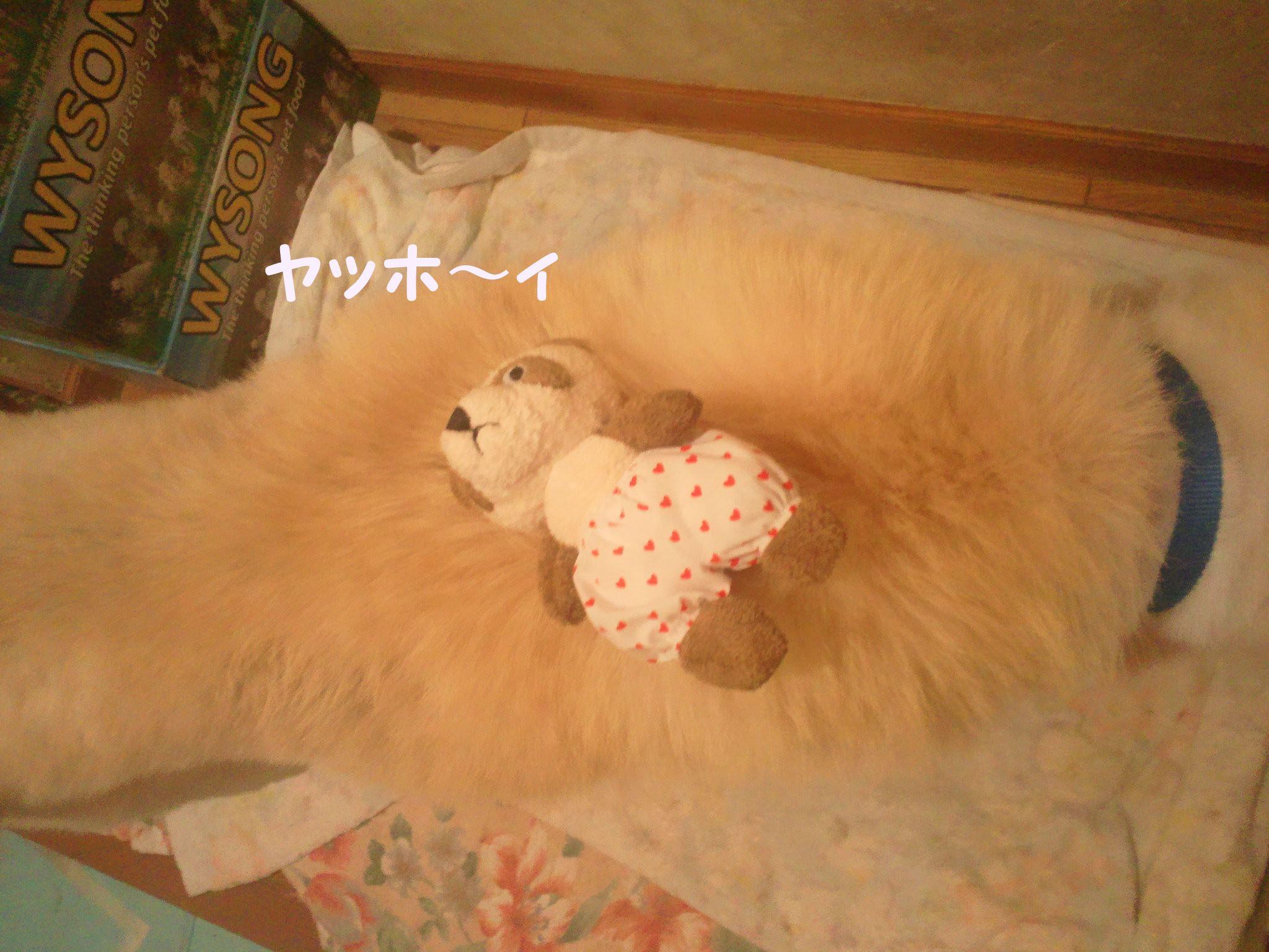 プレゼント for あおば!_f0242002_1322427.jpg