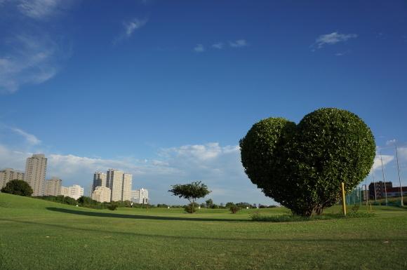 ハートゴルフ場 古郡 憲明さん 多摩川河川敷で撮影