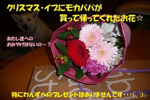 f0121712_14133552.jpg