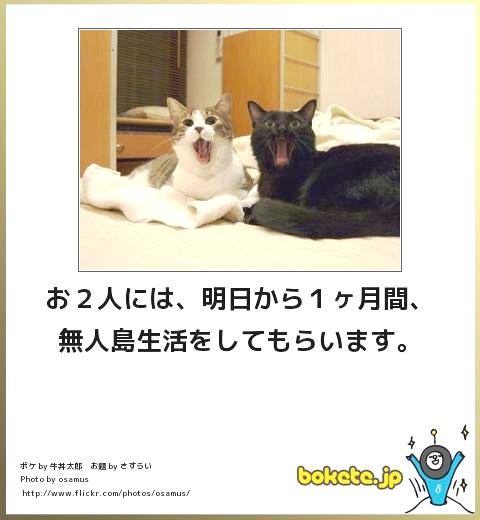 f0031417_185538.jpg