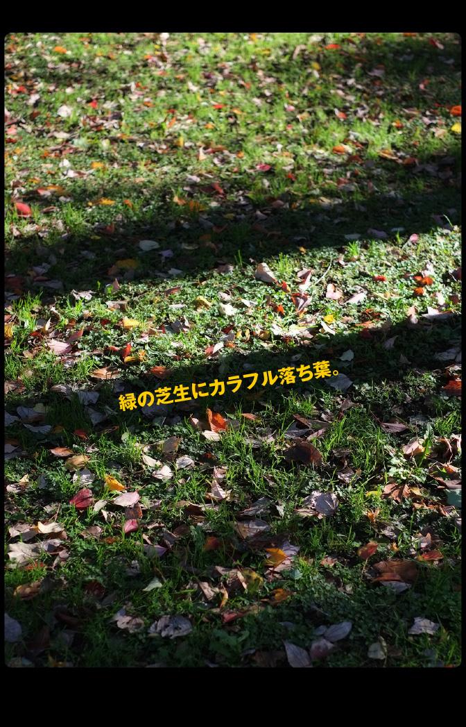 b0344119_22401959.jpg