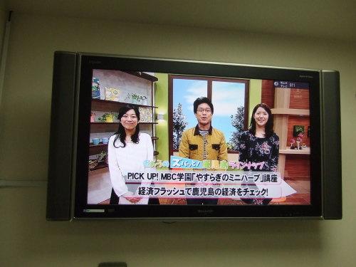 放送 南 日本