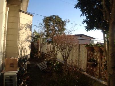 庭木剪定_c0186441_20335587.jpg