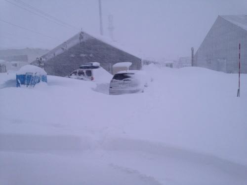 雪に埋れた圃場_c0335145_18573458.jpg